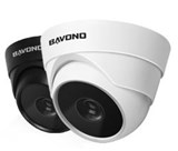 BAVONO BVN133 1.3 Megapixel IR IP Dome Camera